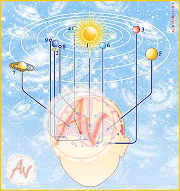 не каждом астрология с точки зрения науки 8 букв мира